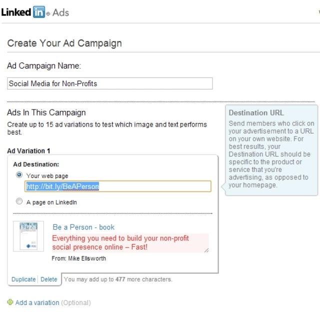 LI ad campaign 1